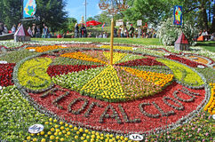 Flower exhibition at Spivoche Pole in Kyiv, Ukraine Stock Images