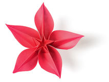 Flower exotic origami. On a white background Royalty Free Stock Images