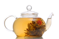 Flower exotic tea Stock Images