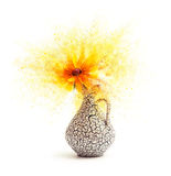 Flower - exploding Stock Photography
