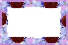 Flower Fabric Border Over White Stock Images