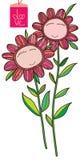 Flower face frame card Stock Photos