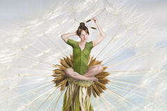 The flower fairy Stock Images