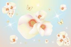 Flower fantasy magnolia Stock Image