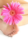Flower and Feet Stock Images