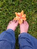 Flower and feet Royalty Free Stock Photography
