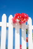 Flower fence Royalty Free Stock Photos