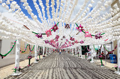 Flower Festival (festas do povo, Campo Maior 2015, Portugal) Stock Photos