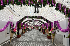 Flower Festival (festas do povo, Campo Maior 2015, Portugal) Royalty Free Stock Photos