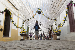 Flower festival from the ground Stock Photography