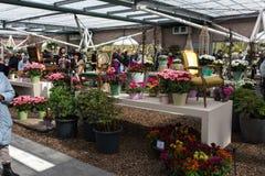 Flower festival in Keukenhof Stock Image