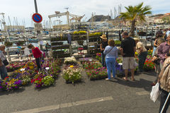 Flower Festival La Ciotat Royalty Free Stock Photography