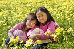 Flower Field. Two young asian girls in a yellow flower field Stock Images