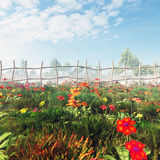 Flower Field In The Misty Morning. Flower field in a misty morning on the country side with blue sky and white fully clouds. A high quality 3d rendered Royalty Free Stock Photos