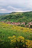 Flower field over village. Yellow flower field over village in Romania Royalty Free Stock Image