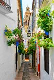 Flower filled street in the Old Town of Cordoba, Spain with cathedral tower stock image