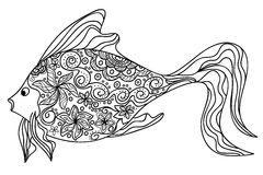 Flower fish Stock Images