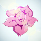 Flower with flare Stock Image