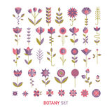 Flower flat collection. Vector flower flat botany collection isolated on white background. Set of floral and herb elements, ecology signs and icons vector illustration