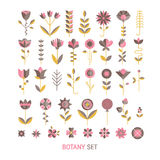 Flower flat collection. Vector  flower flat botany  collection isolated on white background. Set of  floral and herb elements, ecology signs and icons Royalty Free Stock Photography