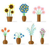 Flower flat colored Royalty Free Stock Photography