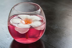 Flower in glass. Flower float on water in glass Stock Photos