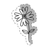 Flower flora wild icon monochrome Royalty Free Stock Photography