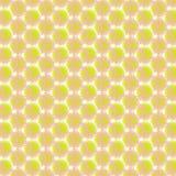 Flower floral pattern, seamless vector background vector illustration design Stock Photo