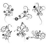 Flower Flourish Swirl set. The vector for Flower Flourish Swirl set vector illustration