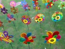 Flower, Flowering Plant, Flora, Wildflower royalty free stock photos