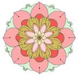 Flower, Flowering Plant, Pink, Flora stock photo