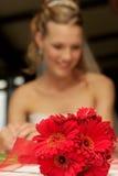 Flower Focus Stock Image