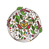 Flower foliage round ornament. Vector illustration Stock Photos