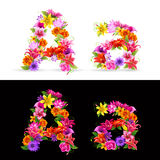 Flower font Stock Photos