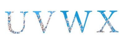 Flower font Alphabet u, v, w, x made of spring flowers. royalty free illustration