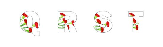 Flower font Alphabet a-z made of Carnation flowers. On white background Stock Illustration