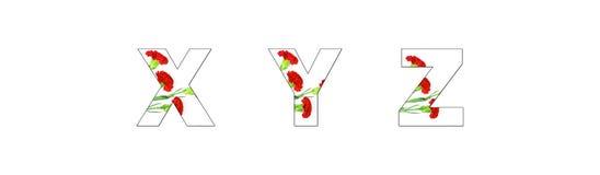 Flower font Alphabet a-z made of Carnation flowers. On white background Royalty Free Illustration