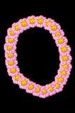 Flower font O Stock Photos