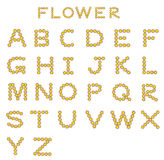 Flower font. Vector A-Z for all decorations. Vector illustration vector illustration