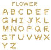 Flower font Stock Image