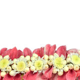 Flower foreground decoration. Royalty Free Stock Photo