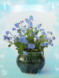 Flower forget-me-not Royalty Free Stock Image