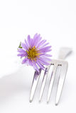 Flower and fork Royalty Free Stock Images