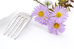 Flower and fork Stock Photo