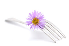 Flower and fork Stock Image