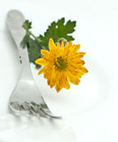 Flower and fork Stock Photos