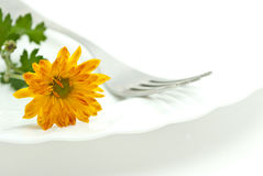 Flower and fork Stock Images