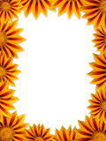 Flower frame. Frame from beautiful yellow flowers Stock Photos