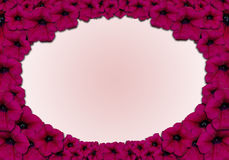 Flower frame. Red flowers frame vith pink background Royalty Free Stock Photos