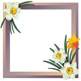 Flower frame. Royalty Free Stock Image